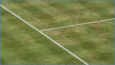 Grass_court_lines